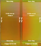 x4_Flash_Memory_Technology